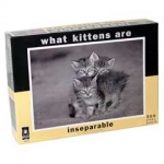 What Kittens Are - Inseparable - Sharon Beals
